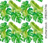hand drawn watercolor green... | Shutterstock . vector #198024746