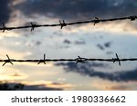 Two Rows Of Barbed Wire At Dusk