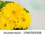 Yellow Gerbera Daisy Flowers ...