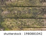 Old Mossy Boards Covered With...