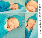 Collage Of A Christmas Newborn...