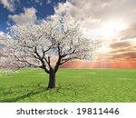 beautiful landscape | Shutterstock . vector #19811446