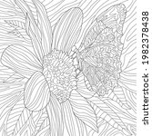 Vector Coloring Botanical...