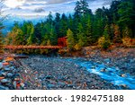 Washington  Usa   River Stream...