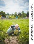 rural baby portrait. toddler... | Shutterstock . vector #1982812448