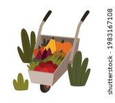 ripe vegetables in wheelbarrow...   Shutterstock .eps vector #1983167108