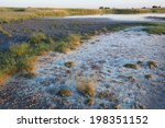 Dry Lake Bed At Neusiedler See...