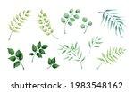 set of floral elements. leaf... | Shutterstock .eps vector #1983548162