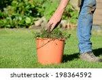 weed control in the garden | Shutterstock . vector #198364592
