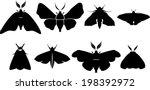 set of moth silhouettes   Shutterstock .eps vector #198392972