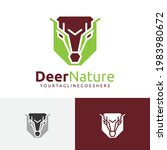 Deer Roe Nature Abstract Animal ...