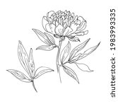 peony with leaves. vector... | Shutterstock .eps vector #1983993335