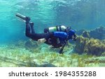 Small photo of A scuba diver dives from the surface to the bottom. The diver begins his dive underwater. Diver shows balance under water