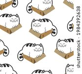 cats in a box. fat cats or...   Shutterstock .eps vector #1984392638