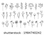 line art floral elements.... | Shutterstock .eps vector #1984740242