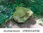 Large Stone Covered With Moss...