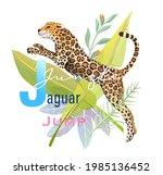 J Is For Jumping Jaguar  Animal ...