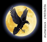 Black Crow Soars On The...