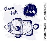 vintage clown fish marine...   Shutterstock .eps vector #1985801348