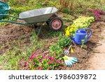 Flowerbed And Gardener...