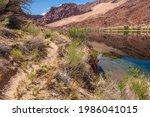Trail Path Along The Colorado...