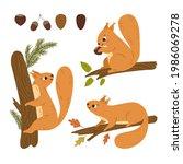 cute cartoon squirrel sitting... | Shutterstock .eps vector #1986069278