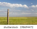 Barbed Wire Cattle Fence In...