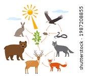 educational banner for kids... | Shutterstock .eps vector #1987208855