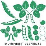 soybean bean. isolated soybean... | Shutterstock .eps vector #198758168