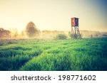 Vintage Morning Landscape With...