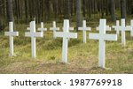 White wooden crosses in the...