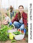 Portrait Of Woman Gardener With ...