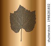 diistress grunge leave leaflet...   Shutterstock .eps vector #1988281832