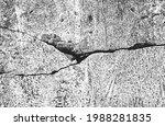 distressed overlay texture of...   Shutterstock .eps vector #1988281835