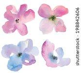 loose watercolor vector flowers....   Shutterstock .eps vector #198842606