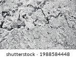 distressed overlay texture of...   Shutterstock .eps vector #1988584448