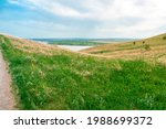 Hilly Landscape With Green...