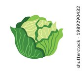cabbage vector flat icon.... | Shutterstock .eps vector #1989290432