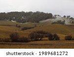 Rolling Green Grassed Hills...