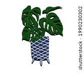 an vector illustration of plant ...   Shutterstock .eps vector #1990230302