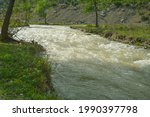 Fresh Stream Of Water Flowing...