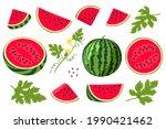 watermelon vector illustration. ...   Shutterstock .eps vector #1990421462