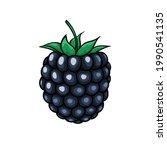 beautiful cartoon blackberry ...   Shutterstock . vector #1990541135
