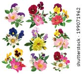 bouquet of wild roses and... | Shutterstock .eps vector #199071962