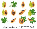 set of illustrations with... | Shutterstock .eps vector #1990789865