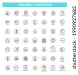 natural organic cosmetics ... | Shutterstock .eps vector #1990927682