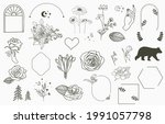 beauty occult collection with... | Shutterstock .eps vector #1991057798