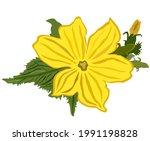 vector isolated illustration of ...   Shutterstock .eps vector #1991198828
