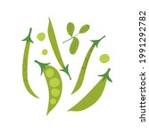 green peas and beans with basil ...   Shutterstock .eps vector #1991292782