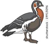 bird character | Shutterstock .eps vector #19915096